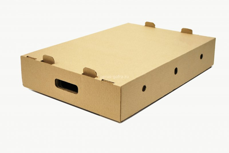 Гофролоток для мяса крышка/дно 570х395х110