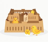 Перевозка живой птицы
